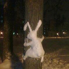 Schnee in Deutschland Schnee In Deutschland, Snow Sculptures, Snow Art, Photo Images, Snow Bunnies, Bugs Bunny, Bunny Art, Winter Fun, Winter Snow