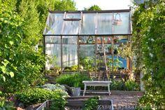 Country style greenhouse. Kanelia ja kardemummaa, Vapaana