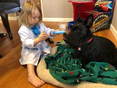 You are going to stick that where? Scottish Terrier, Scottie, Pets, Animals, Scottish Terriers, Scottie Dog, Animales, Animaux, Animal