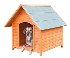 """- Overall dimensions of 38"""" x 44"""" x 41"""". - Door opening at 15"""" x 22"""". - Overall weight is 66 lbs. - Includes a groove and draft resistant roof. - Weatherproof materials. - Protected foundation using durable plastic. - Floor is easily detachable. - Proper ventilation."""