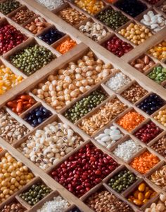 A site outlining the terminology used to refer to seeds - GMO, GE, OP, Heirloom, Hybrid - and explaining what they mean.   Very interesting.