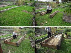 Podivuhodná zahrada | CEZ OKNO