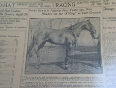 APR 23, 1905 NEWSPAPER PAGE#J5377- BYRNE OF ROSCREA, PROPERTY OF JOHN S. BRATTON