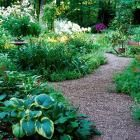 20 Secrets to Landscape Success | Midwest Living -this is a great guide