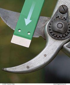 Sharpening Pruners - Fine Gardening Article, gardening, landscaping, tool upkeep
