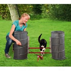 Agility Set for Cats at zooplus