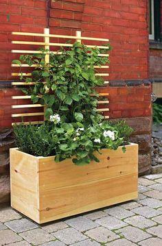 Holz Pflanzkübel mit Rankhilfe für Kletterpflanzen
