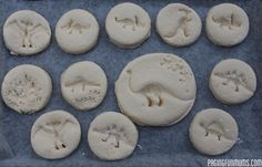 DIY Dinosaur Fossils, great for homeschool science