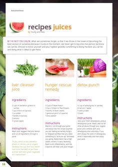 Raw food reset 21 day raw cleanse meal plan cleanse meals and food forumfinder Gallery