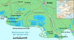 Camargue – Wikipedia / In 2011 I was able to discover the beauty of the Camargue Provence,