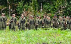 Guerrilleros del Frente 33 de las FARC en el Magdalena Medio.