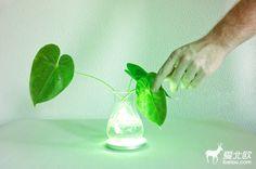 灵气植物灯 | 爱北欧