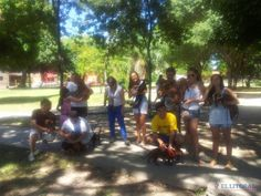 Encuentro de perros salchichas en Corrientes, Argentina