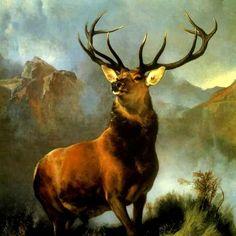 veado no vale estreito campo mata pintor landseer tela repro