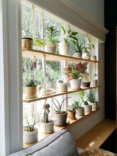 Hanging Plant Shelves – The Artful Roost Hanging Plant Shelves – The Artful Roost Window Plants, Window Shelf For Plants, Balcony Plants, Hang Plants On Wall, Indoor Window Planter, Indoor Plant Decor, Wall Hanging Plants Indoor, Window Ledge Decor, Indoor Window Boxes
