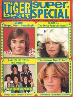 Tiger Beat Magazine.  I used to cut the pics out and hang them on the wall in my room.