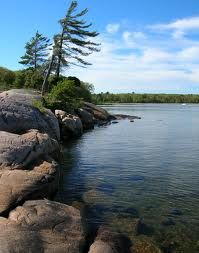 Killbear Provincial Park  Ontario Canada. This is what made me love nature. Watching the stars all night. Campfires. Hot chocolate. Food over  a grill. Skinny dipping in a cold lake. And friends i made and still have 25 years later.