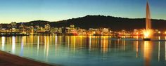 Wellington City - Oriental Bay at Night. I love my hometown. Coolest city in the world. Wellington City, Wellington New Zealand, The Places Youll Go, Places To Visit, Bay Lodge, River Camp, Countries Of The World, San Francisco Skyline, Beautiful Places