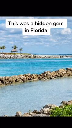 Florida Vacation, Florida Travel, Vacation Places, Dream Vacations, Vacation Trips, Vacation Spots, Travel Usa, Fun Places To Go, Beautiful Places To Travel