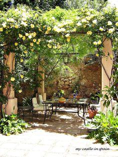 patio+roses.JPG (1200×1600)