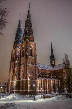 Uppsala Cathedral - Uppsala is where my family lives, I have been to this church! Uppsala University, Voyage Suede, Welcome To Sweden, Kingdom Of Sweden, About Sweden, Sweden Travel, Scandinavian Countries, Faroe Islands, Old Churches