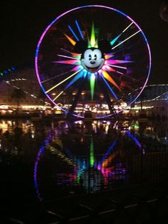 Disneyland California Adventure. I want to visit here one day. Please check out my website thanks. www.photopix.co.nz