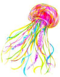 Resultado de imagen para watercolor jellyfish clipart