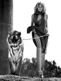 I wish I had a tiger to shoot with.