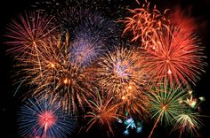 Cats, dogs,and other animals living in the Italiantown of Collecchio will rest a little easier - the town of Collecchio in Italy's Parma province have passed new legislation that forces citizens to use silent fireworks as a way to minimize the fear and trauma cats, dogs,and other animals experience during the celebratory displays.