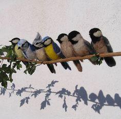 ptáčci Felted Birds