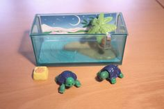 Loved the turtles... I have this love for the tiny toys and littlest pet shop is so cute