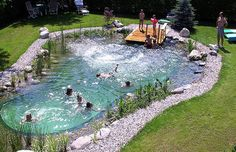 natural pools | Natural Swimming Pool | EndAllDisease.comEndAllDisease.com