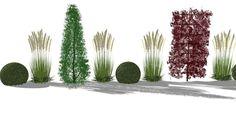 Sichtschutzkombination aus Säulembäumen, Heckenelementen, Gräsern und Buchskugeln