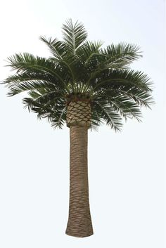 Palm tree artificial outdoor palm trees decorative artificial palm