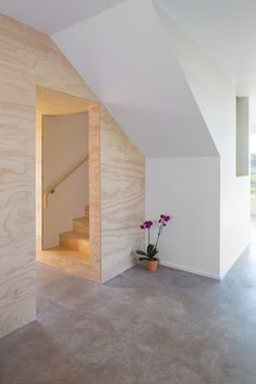 Elephant House by Faye and Walker Architecture