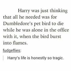 Harry: gosh it would be so awful if this creature died right now. Fawkes: *chooses that precise moment to burst into flames and scare the heck out of this poor kid* Harry Potter Love, Harry Potter Universal, Harry Potter Fandom, Harry Potter Memes, Harry Potter World, Hogwarts Letter, Yer A Wizard Harry, Drarry, Ron Weasley