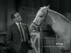 Clint Eastwood Meets Mister Ed - 1 of 2 (Captioned)