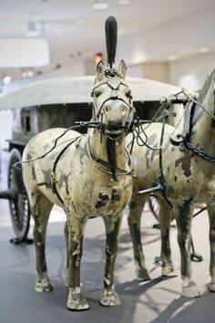 Chinese Terracotta Warriors- I saw these horses. Each one looks just like it's living counter part.