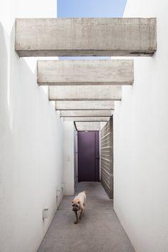 Gilberto Belleza, Pedro Vannucchi · Minas Gerais House