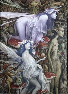 BRIAN FROUD FAIRIES