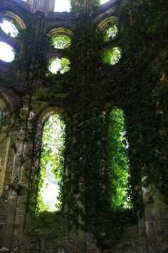 Overgrown part of the house? Dark Green Aesthetic, Nature Aesthetic, Slytherin Aesthetic, Abandoned Places, Pretty Pictures, Aesthetic Pictures, Mother Nature, Beautiful Places, Scenery