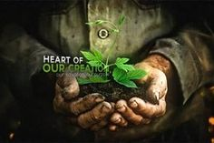 The 65 best Stewardship images on Pinterest   Pastor, Allah and Amp