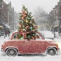 Looking for Christmas Tree decorating inspiration? Interior designer, Laurel Bern shares images of 22 magical christmas trees full of inspiring ideas. Driving Home For Christmas, Days Until Christmas, Magical Christmas, Merry Christmas And Happy New Year, Merry Xmas, Christmas Shopping, Celebrating Christmas, Beautiful Christmas, Christmas Scenes