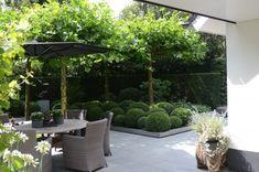 Moderne tuin ontwerpen met terras