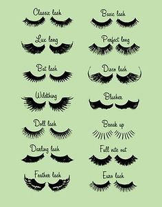 What lashes are you working today?