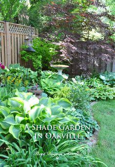 A Shade Garden in Oakville, Ontario - Garden Design Ideas 2019 Rustic Gardens, Outdoor Gardens, Small Back Gardens, Front Gardens, Design Patio, Courtyard Design, Garden Cottage, Front Yard Landscaping, Landscaping Ideas