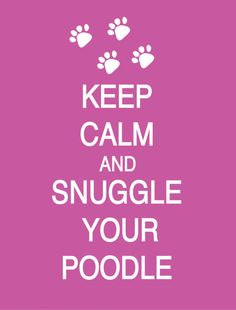Keep Calm and Snuggle Your Poodle (any breed) Poster. $17.00, via Etsy.