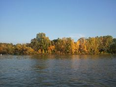 River in the fall