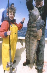 Deep Sea Fishing out of Green Harbor, Marshfield, MA