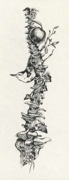 Drawing Human Anatomy Art and illustrations of the human anatomy. Kunst Tattoos, Tattoo Drawings, Cool Drawings, Skeleton Drawings, Tattoo Crane, Tattoo Bird, Tree Roots Tattoo, Drawn Art, Desenho Tattoo